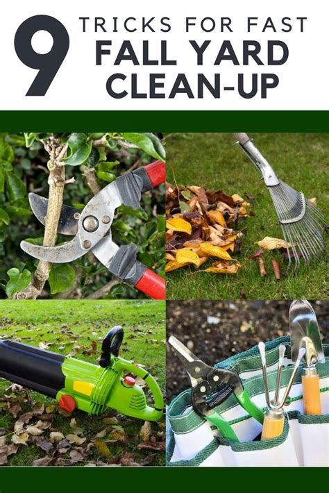backyard clean up 17 best images about fall clean up on pinterest gardens