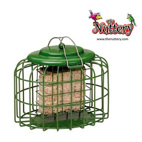 Nuttery Bird Feeders the nuttery squirrel proof oval suet cake bird feeder ebay