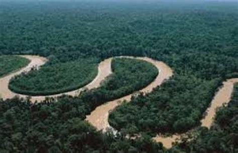 amazon america 10 facts about amazon rainforest fact file
