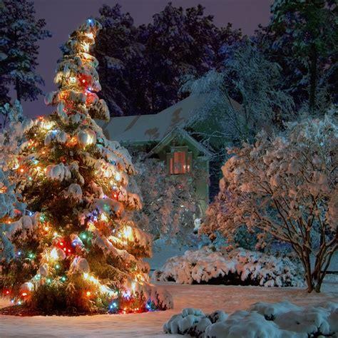 christmas xmas wallpapers christmas tree images 1024x1024 outdoor christmas tree desktop pc and mac wallpaper