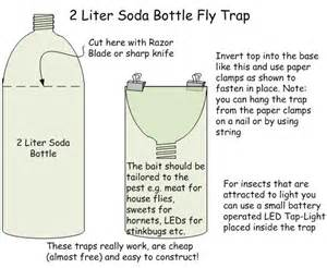 how to make a fly trap