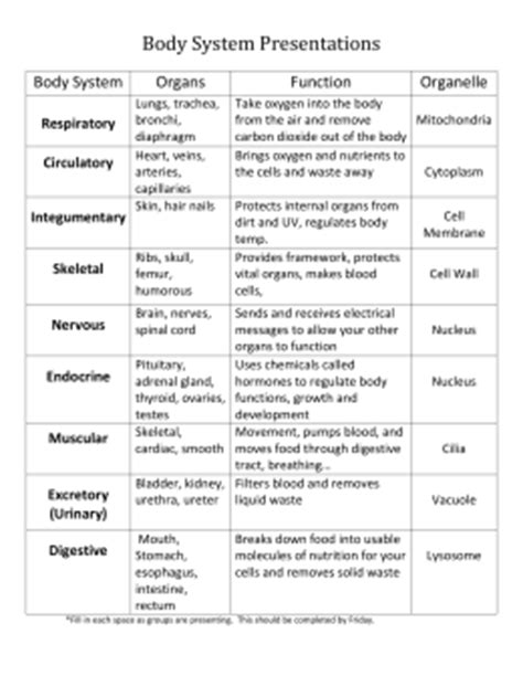 Systems Matching Worksheet Answers by Pictures System Worksheet Getadating