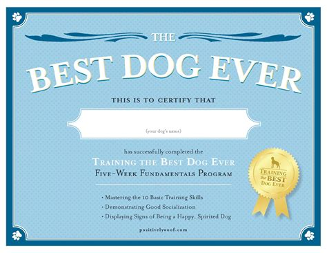 free puppy classes exle electronic service certificatecasanovacertificates