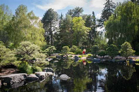 Proposal Botanic Gardens Denver Colorado Wedding Botanic Gardens Denver Hours