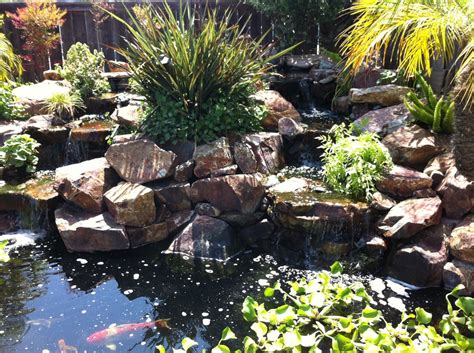 San Diego Pond And Garden san diego pond and garden 27 reviews landscaping