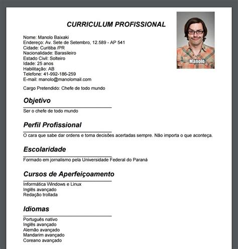 Modelo Curricular Humanista Pdf curriculum vitae para rellenar y descargar pdf
