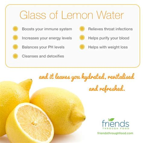 Warm Lemon Water Detox Benefits by 79 Best Images About Health Journal On