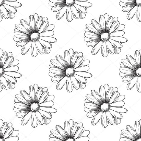 draw a pattern using flower as motif flower pattern camomile drawing vector stock vector