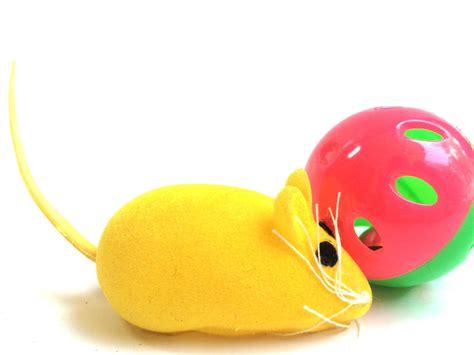 Mainan Kucing Bola Pyramid jual mainan kucing bola dan tikus tikusan bisa bunyi usro pet shop
