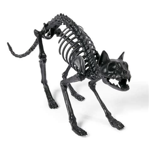 Amazon Kitchen Knives Lifesize Black Skeleton Cat So That S Cool
