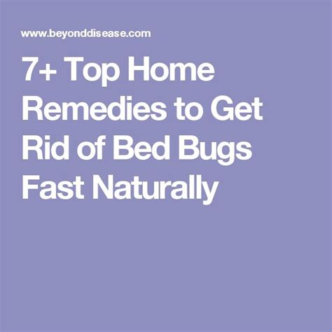 7 Ways To Get Rid Of Dust Mites by 1000 Ideas About Killing Bed Bugs On Bed Bugs