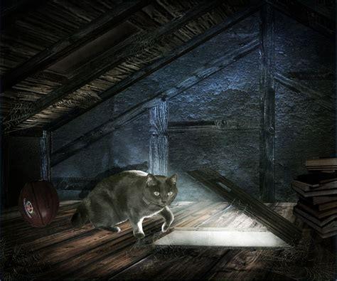 in the attic the cat in the attic creepypasta wiki fandom powered by wikia