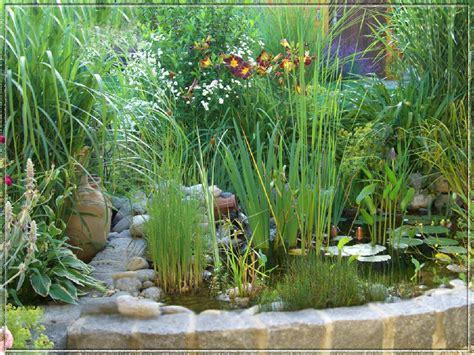 Wie Gestalte Ich Mein Garten by Wie Gestalte Ich Mein Garten