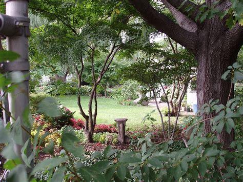 Jardin Botanical Jard 237 N Bot 225 Nico De Botanical Garden
