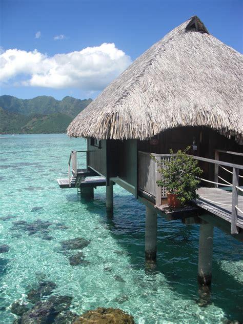 moorea overwater bungalow blue lagoon paradise moorea polynesia