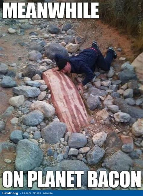 Bacon Memes - meanwhile on planet bacon funny rock meme bacon today