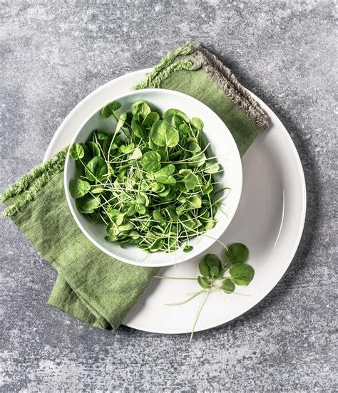 alimenti ricchi di collagene collagene cos 232 e in quali cibi si trova it
