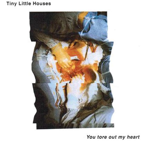 little houses song the 20 best album covers of 2015