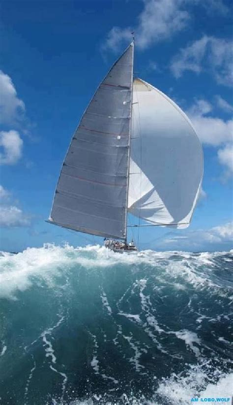 sailboats meaning the true meaning of extreme sailing and here i thought
