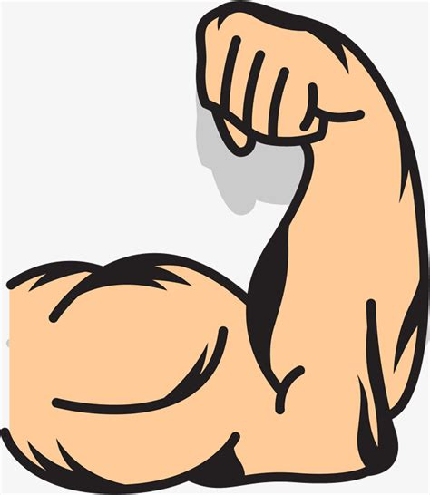 arm clipart strong arms strong arm png and vector for free