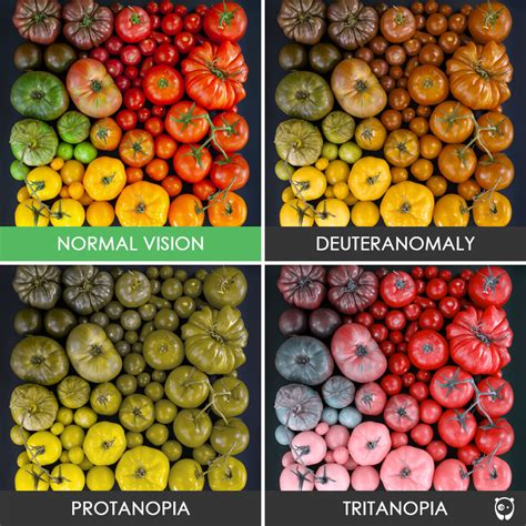 what does color blindness look like you ll be amazed how people with color blindness see the