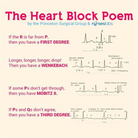 A Guide For The Profession 8e the block poem great diagram to remember some rhythms nursing diagram