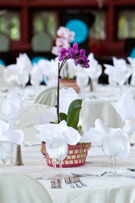 orchid centerpieces for dining table orchid centerpiece on wedding tables stock photo image