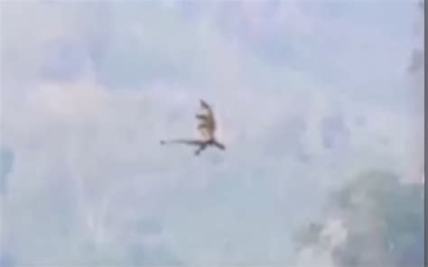 Sighting Of real dragons sighting in china details here