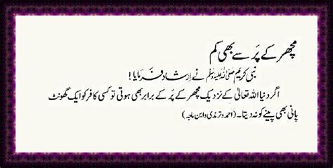 islam ahadees  fikr  akhirat