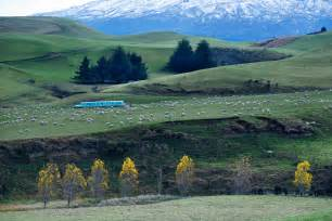 Landscape Pictures Nz File New Zealand Landscape 8674 Jpg Wikimedia Commons
