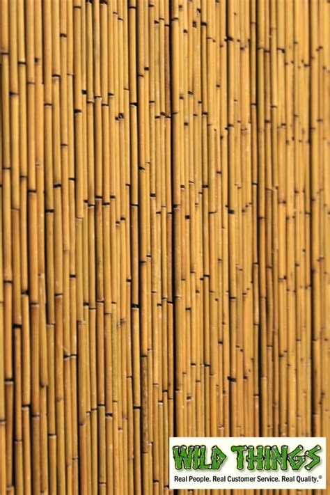Bamboo Curtains Bamboo Beaded Curtains Plain 135 Strands