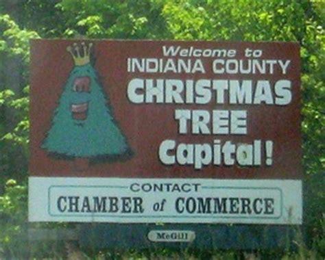 the wandering wahoo the christmas tree capital of the world
