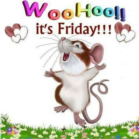 its friday images woohoo its friday pictures photos and images for
