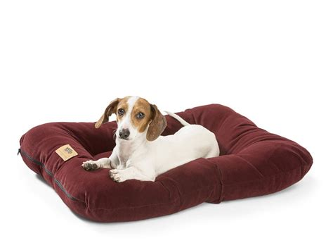 dog bed reviews stupendous dog bed rating orvis dog bed ratings carhartt
