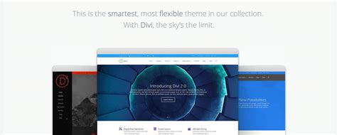 themes divi review detailed review of divi theme killer