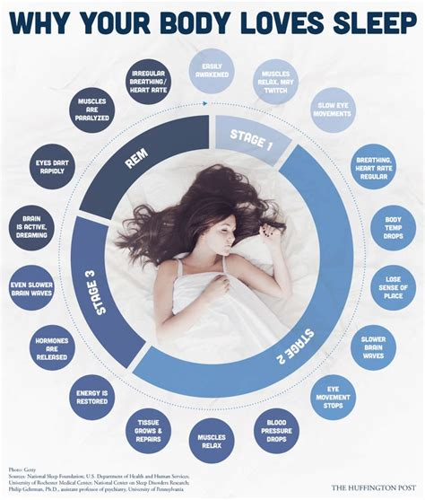 The Importance Of An Afternoon Nap by The Importance Of Sleep And Naps Pre Tend Be Curious