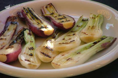 cucinare cipollotti ricetta cipollotti grigliati le ricette dello spicchio