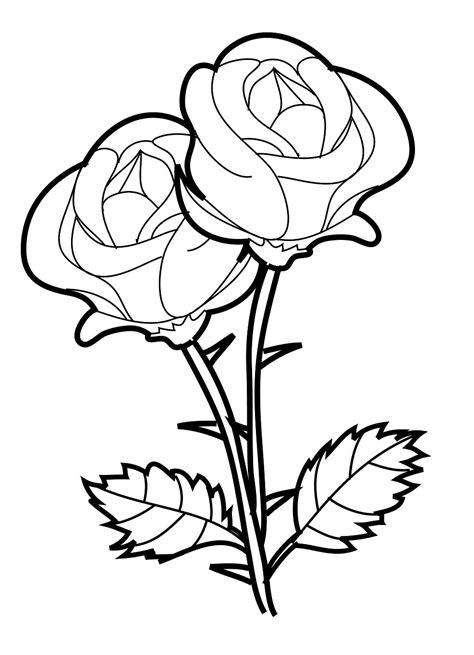 Gambar Mewarnai Bunga Mawar Terbaru | gambarcoloring