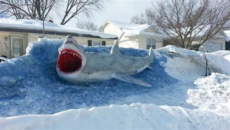 Home Snow Vanishing 39 Gr shark sculpted out of snow turns heads woodtv