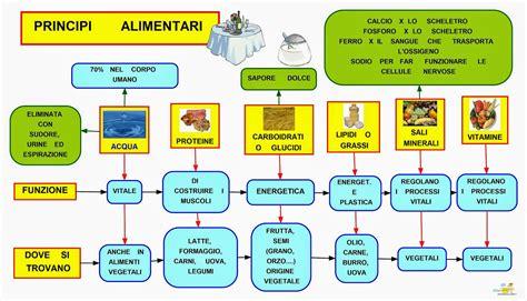 in alimenti si trova il calcio mappa concettuale principi alimentari