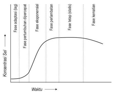 Alat Destilasi Protein Tekim Kinetika Pertumbuhan