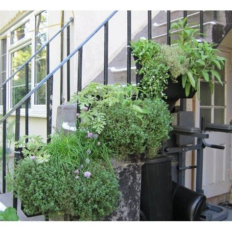 wally pocket  herbs artificial vertical garden
