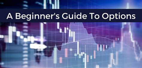 options trading crash course the 1 beginner s guide to make money with trading options in 7 days or less books beginner s guide to options learn to trade trading college