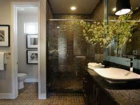 Small Master Bathrooms by Haughty Small Master Bathroom Ideas