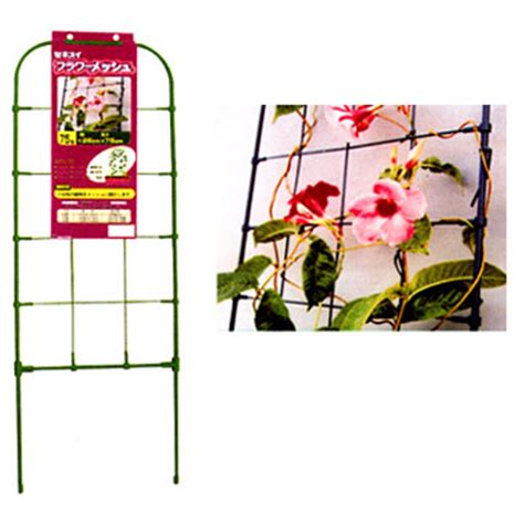 how to support climbing plants climbing plant growth support