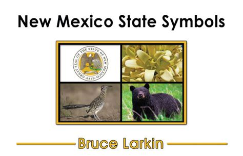 New Mexico State Symbol
