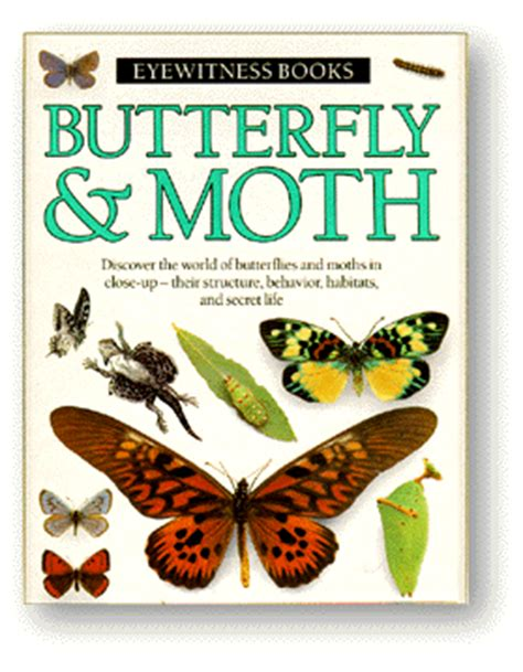 the of the moths books thinking butterfly moth
