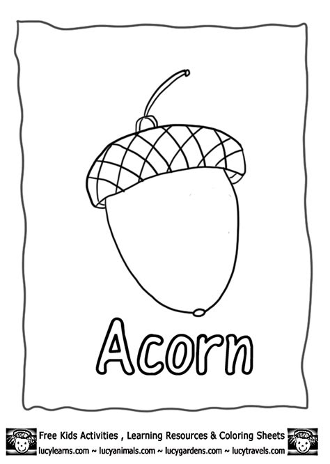 acorn coloring pages acorn coloring pages to and print for free