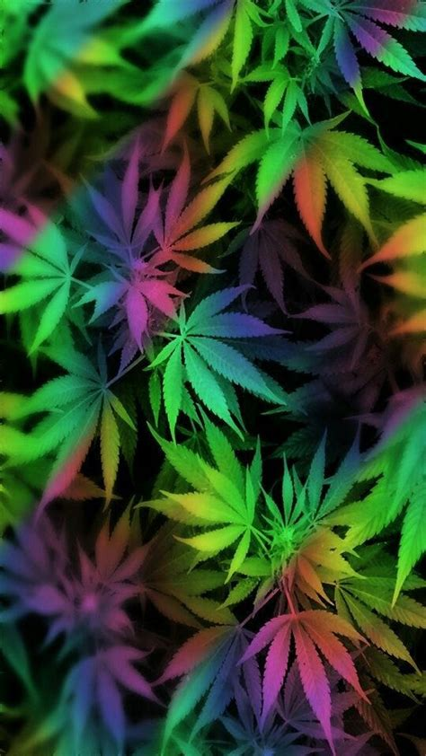 weed wallpaper pinterest weed leaves wallpaper from weed wallpapers app by