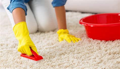 como limpiar una alfombra sin aspiradora faro de vigo